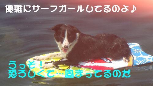 b0101991_2254209.jpg