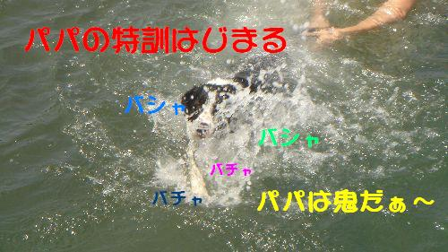 b0101991_2258277.jpg