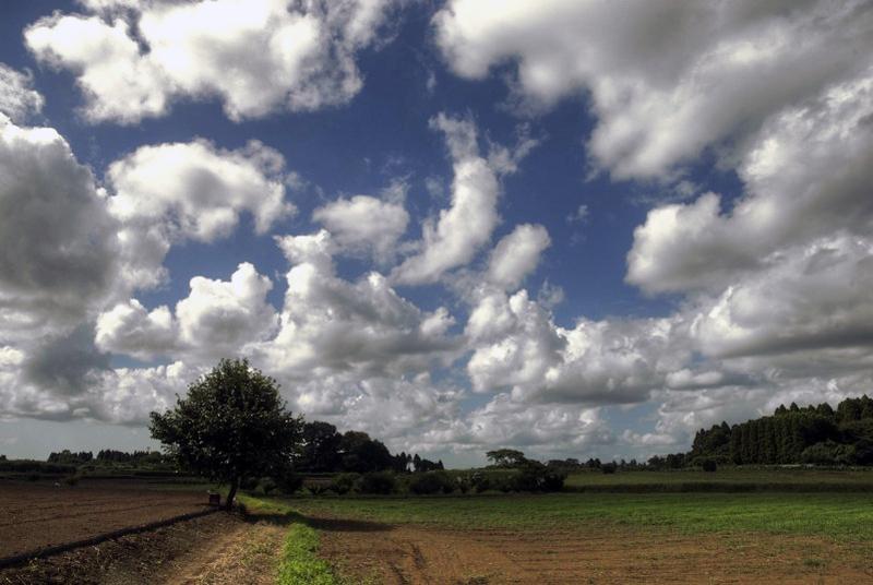 午後の雲。_c0127403_20184591.jpg
