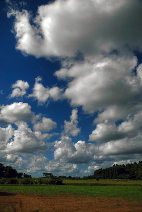 午後の雲。_c0127403_2018485.jpg