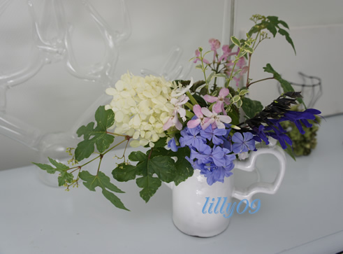 花の癒し_c0198321_2139416.jpg