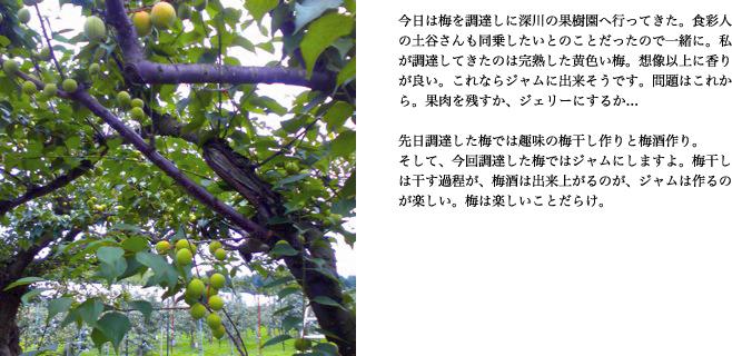 f0220343_1702721.jpg