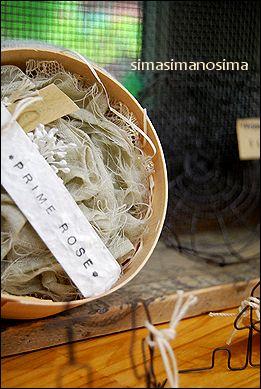 シマシマのシマ、明日会場でお待ちしています♪_a0105872_19174188.jpg