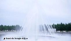 f0150377_10505665.jpg