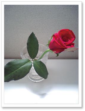 f0174020_1432328.jpg