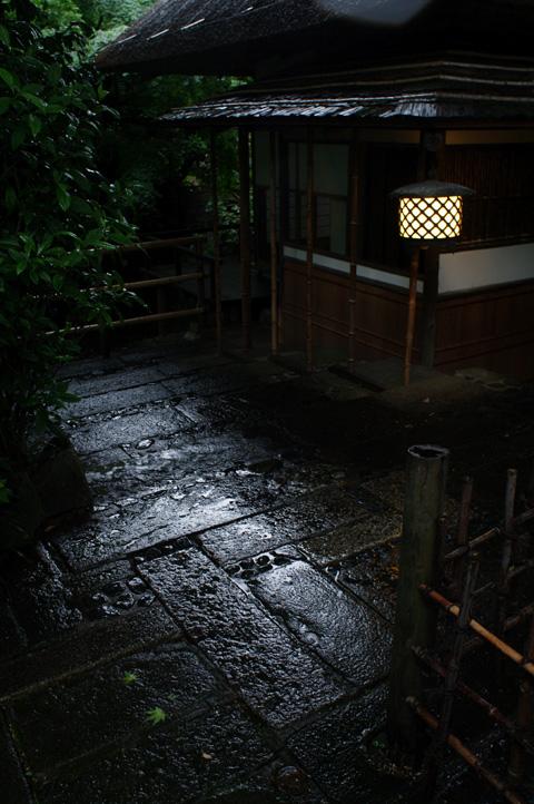 文京区関口界隈 雨中の図_b0058021_14381161.jpg