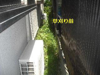 f0031037_18233675.jpg