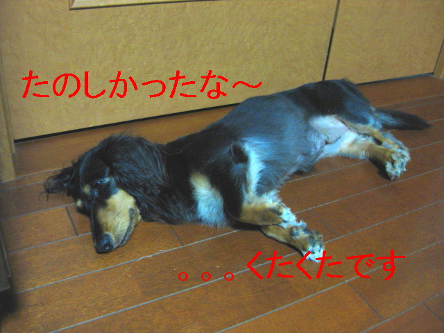 b0181341_017027.jpg
