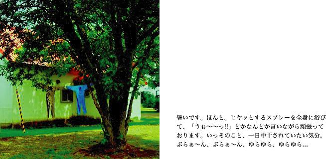 f0220343_1249678.jpg