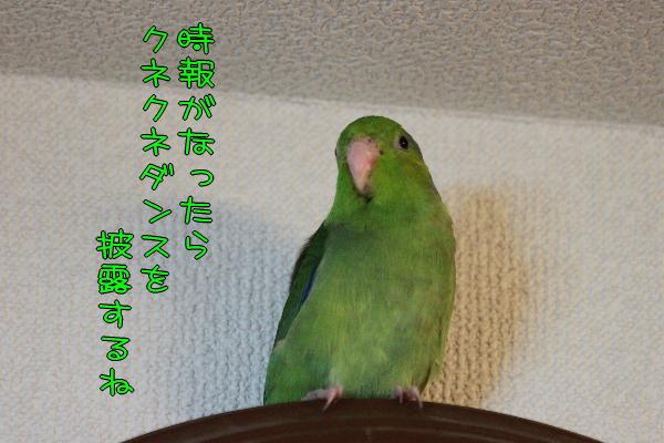b0062090_1019932.jpg