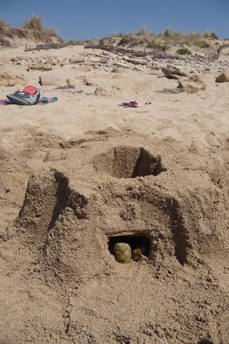 ユキちゃん作「砂の」カステッロ・デル・モンテ_f0106597_6234894.jpg