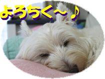 f0084422_18515735.jpg