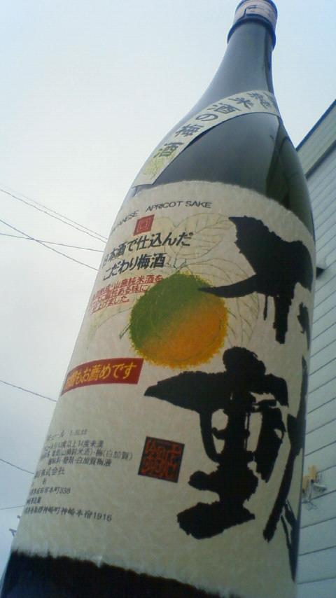 【地梅酒】 不動 山廃純米酒の梅酒_e0173738_10512129.jpg