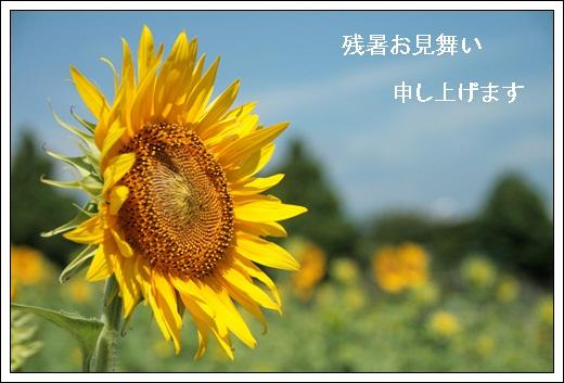 b0138661_23252235.jpg