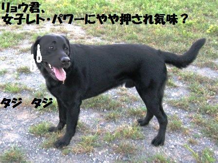 f0230380_2210376.jpg