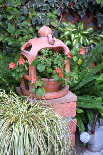 ◆暑さに強い花は_e0154682_0415253.jpg