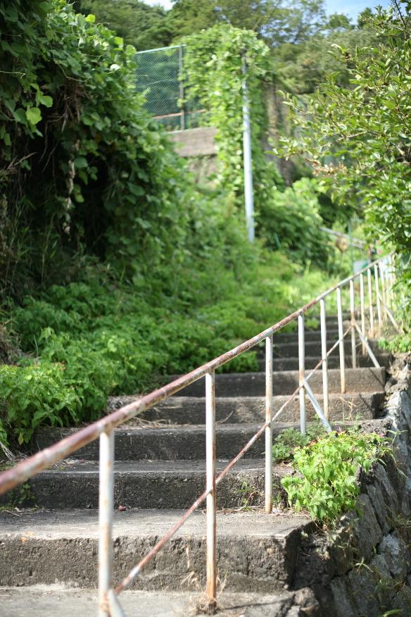 琵琶湖 沖島 に遊ぶ。①_b0155395_2325976.jpg