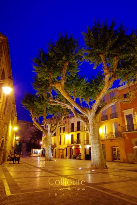 コリウールの灯 - Lumière de Collioure_b0108109_201255.jpg