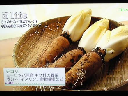 東海テレビ ア・ライフ ちこり村レストラン_d0063218_1113505.jpg