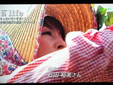 東海テレビ ア・ライフ ちこり村レストラン_d0063218_11143268.jpg