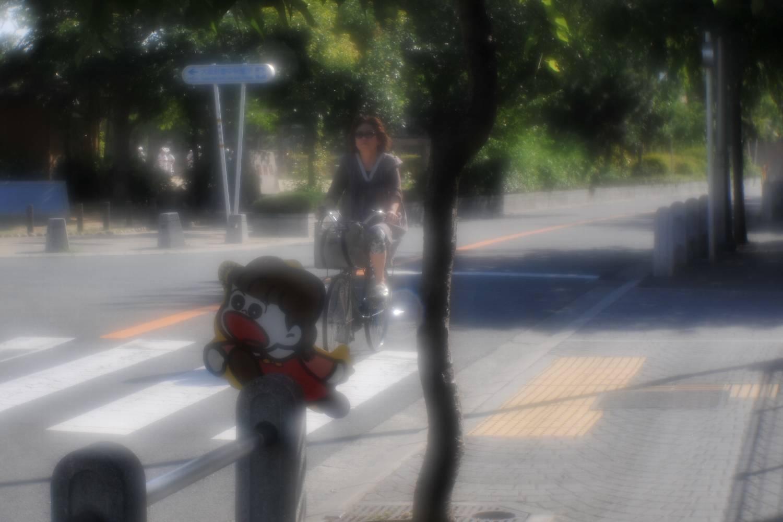 清原VK70Rで南桜塚へ_b0069128_1184318.jpg