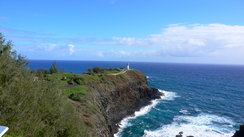 Kilauea Lighthouse_e0189465_12475950.jpg