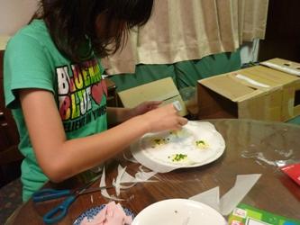 レンジでチン!で変わりチーズ煎餅づくり。_e0188087_21332331.jpg