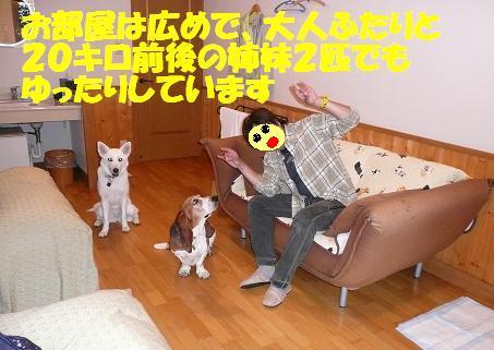 f0121712_10481496.jpg
