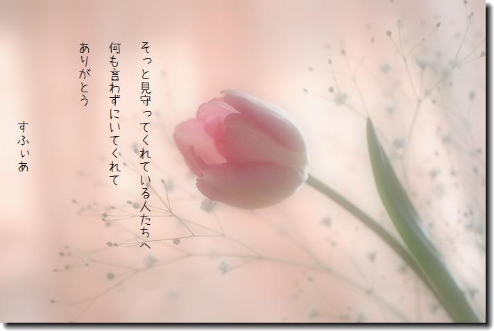 b0152416_18325440.jpg