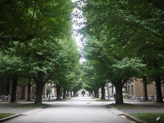 東京大学_c0193735_21291333.jpg