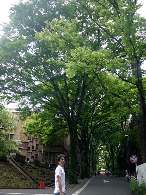 東京大学_c0193735_21325682.jpg
