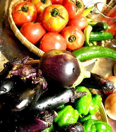 活きのいいお野菜と自給自足。_c0156749_1144868.jpg