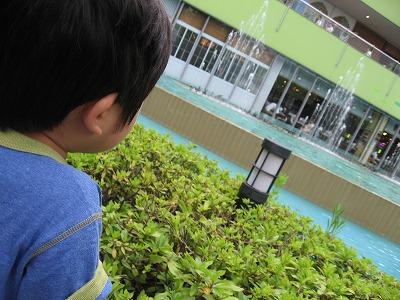 Dream City Neo Tokio_d0044764_0292450.jpg