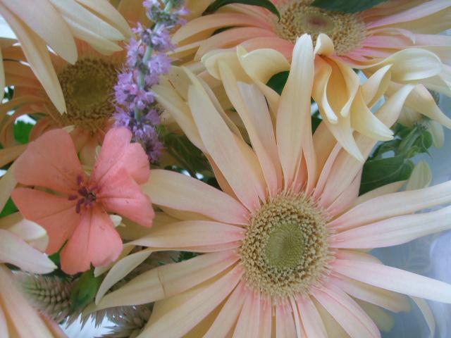 オークリーフ(夏のピンクカラーブーケ)_f0049672_13173878.jpg