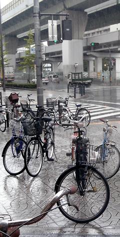 激しい雨_f0235201_2221446.jpg