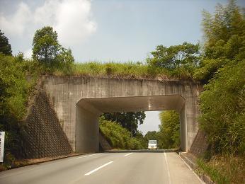 トンネル_e0149215_20431938.jpg