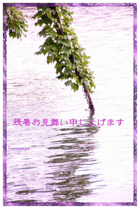 a0145741_17423291.jpg