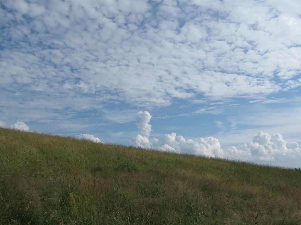 夏と秋の雲が同居していた_d0001843_2354368.jpg