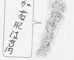 清正の石垣_f0122653_14563357.jpg
