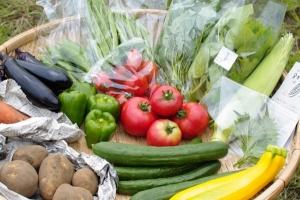 野菜セット不定期便 No.8-水 の発送 _c0110869_20553714.jpg