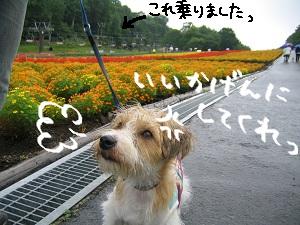 b0092580_0144235.jpg