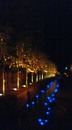 竹と灯のアート♪_f0028791_004988.jpg