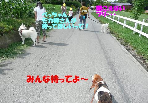f0121712_10265444.jpg