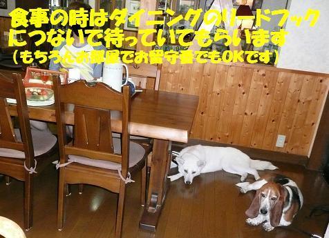 f0121712_13184649.jpg