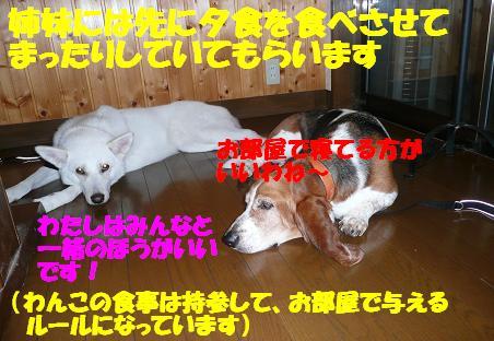 f0121712_13185475.jpg