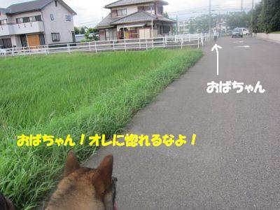 f0143123_203574.jpg