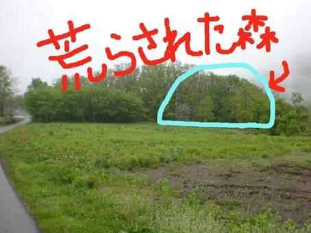 c0105157_20135170.jpg