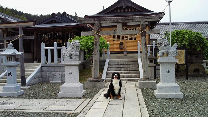 京都へ_b0135889_2138531.jpg