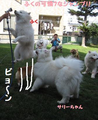f0212597_167795.jpg