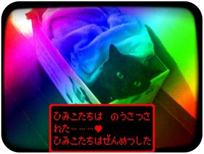 c0004211_14295435.jpg